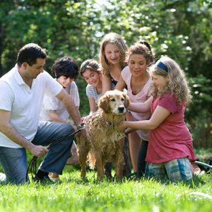 Opinión Sesiones de Fotos de Familia